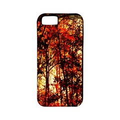 Forest Trees Abstract Apple iPhone 5 Classic Hardshell Case (PC+Silicone)