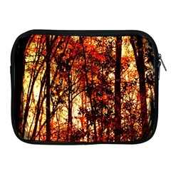 Forest Trees Abstract Apple Ipad 2/3/4 Zipper Cases