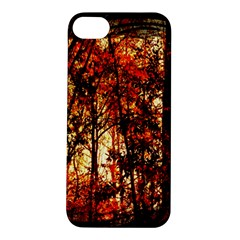 Forest Trees Abstract Apple iPhone 5S/ SE Hardshell Case