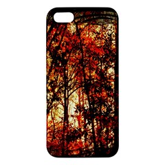 Forest Trees Abstract Iphone 5s/ Se Premium Hardshell Case