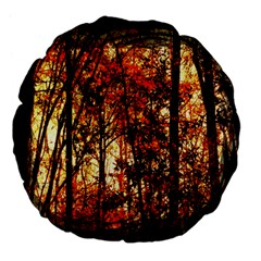Forest Trees Abstract Large 18  Premium Flano Round Cushions
