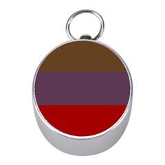 Brown Purple Red Mini Silver Compasses