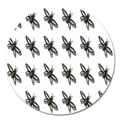 Insect Animals Pattern Magnet 5  (round)