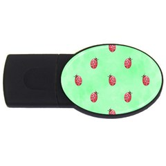 Pretty Background With A Ladybird Image USB Flash Drive Oval (1 GB)