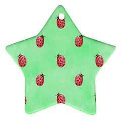 Pretty Background With A Ladybird Image Star Ornament (Two Sides)