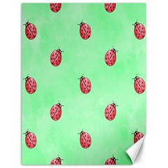 Pretty Background With A Ladybird Image Canvas 12  X 16