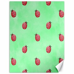 Pretty Background With A Ladybird Image Canvas 18  x 24