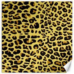 A Jaguar Fur Pattern Canvas 16  X 16