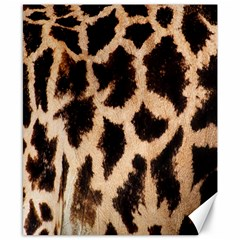 Yellow And Brown Spots On Giraffe Skin Texture Canvas 8  x 10
