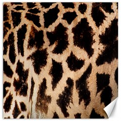 Yellow And Brown Spots On Giraffe Skin Texture Canvas 12  x 12