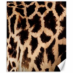 Yellow And Brown Spots On Giraffe Skin Texture Canvas 20  x 24