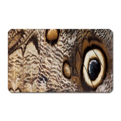 Butterfly Wing Detail Magnet (rectangular)