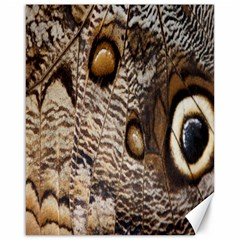 Butterfly Wing Detail Canvas 16  x 20