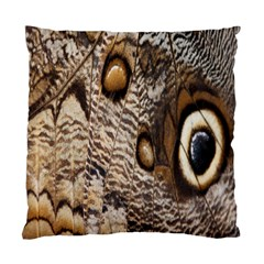 Butterfly Wing Detail Standard Cushion Case (One Side)