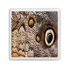 Butterfly Wing Detail Memory Card Reader (Square)