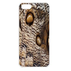 Butterfly Wing Detail Apple iPhone 5 Seamless Case (White)