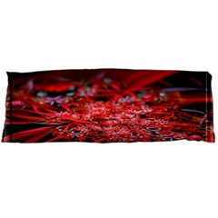 Red Fractal Valley In 3d Glass Frame Body Pillow Case Dakimakura (two Sides)