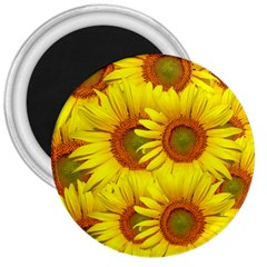 Sunflowers Background Wallpaper Pattern 3  Magnets