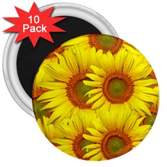 Sunflowers Background Wallpaper Pattern 3  Magnets (10 Pack)