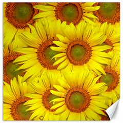 Sunflowers Background Wallpaper Pattern Canvas 16  x 16
