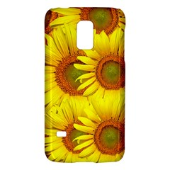 Sunflowers Background Wallpaper Pattern Galaxy S5 Mini