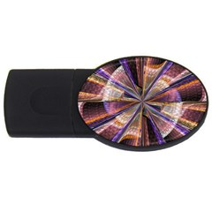 Background Image With Wheel Of Fortune USB Flash Drive Oval (1 GB)