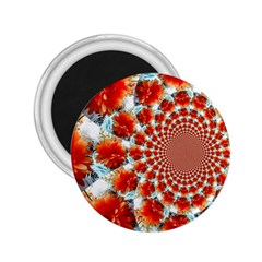 Stylish Background With Flowers 2 25  Magnets
