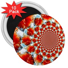 Stylish Background With Flowers 3  Magnets (10 pack)