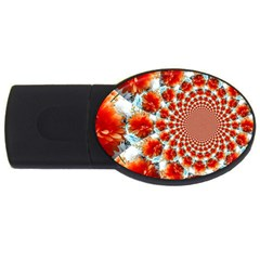 Stylish Background With Flowers Usb Flash Drive Oval (4 Gb)