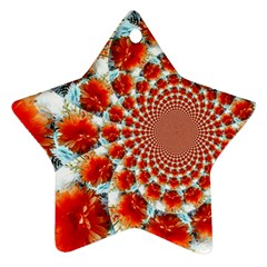 Stylish Background With Flowers Star Ornament (two Sides)