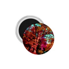 Abstract Fall Trees Saturated With Orange Pink And Turquoise 1.75  Magnets