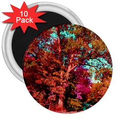Abstract Fall Trees Saturated With Orange Pink And Turquoise 3  Magnets (10 pack)