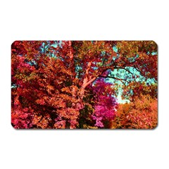 Abstract Fall Trees Saturated With Orange Pink And Turquoise Magnet (Rectangular)
