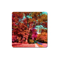 Abstract Fall Trees Saturated With Orange Pink And Turquoise Square Magnet