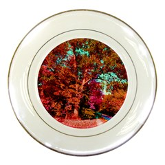 Abstract Fall Trees Saturated With Orange Pink And Turquoise Porcelain Plates