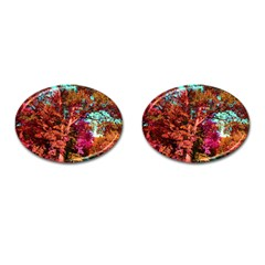 Abstract Fall Trees Saturated With Orange Pink And Turquoise Cufflinks (Oval)