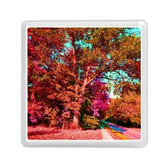 Abstract Fall Trees Saturated With Orange Pink And Turquoise Memory Card Reader (Square)