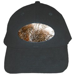 Digitally Painted Colourful Winter Branches Illustration Black Cap