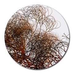 Digitally Painted Colourful Winter Branches Illustration Round Mousepads