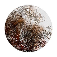 Digitally Painted Colourful Winter Branches Illustration Ornament (round)
