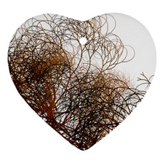 Digitally Painted Colourful Winter Branches Illustration Ornament (Heart)