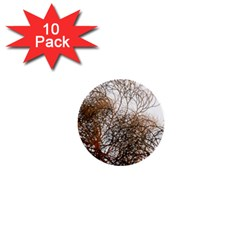Digitally Painted Colourful Winter Branches Illustration 1  Mini Buttons (10 Pack)