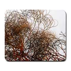 Digitally Painted Colourful Winter Branches Illustration Large Mousepads