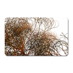 Digitally Painted Colourful Winter Branches Illustration Magnet (Rectangular)