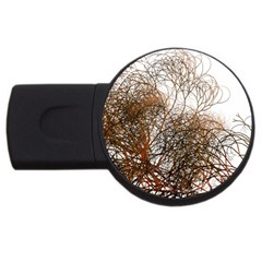 Digitally Painted Colourful Winter Branches Illustration USB Flash Drive Round (1 GB)