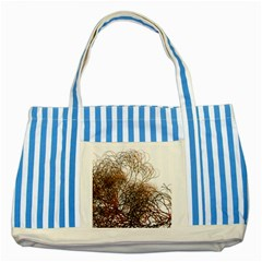 Digitally Painted Colourful Winter Branches Illustration Striped Blue Tote Bag