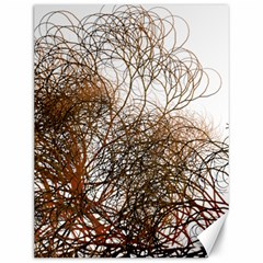 Digitally Painted Colourful Winter Branches Illustration Canvas 12  x 16