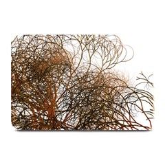 Digitally Painted Colourful Winter Branches Illustration Plate Mats