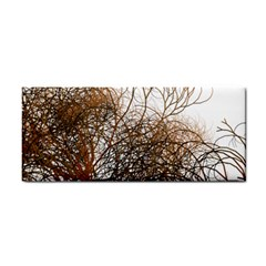 Digitally Painted Colourful Winter Branches Illustration Cosmetic Storage Cases