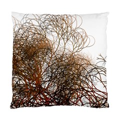 Digitally Painted Colourful Winter Branches Illustration Standard Cushion Case (one Side)